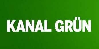 Grüne bei Youtube