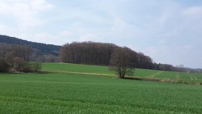 Hengeberg